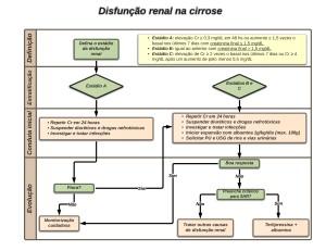 Disfunção renal na cirrose